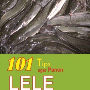 101 TIPS AGAR PANEN LELE DALAM 50 HARI